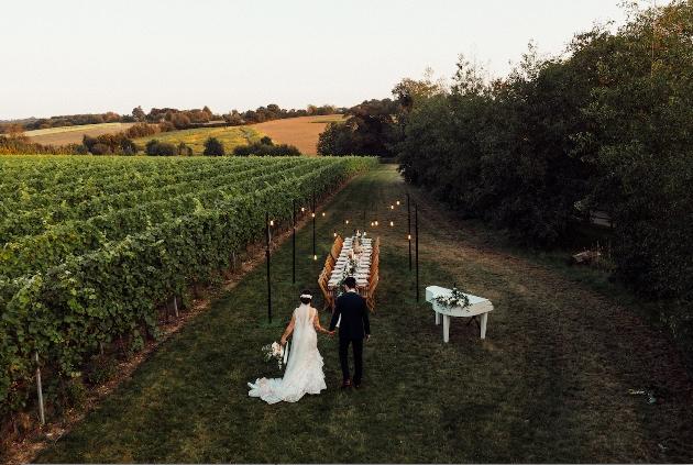 wedding couple walking through vineyard